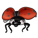 Ladybug Clip Art 11