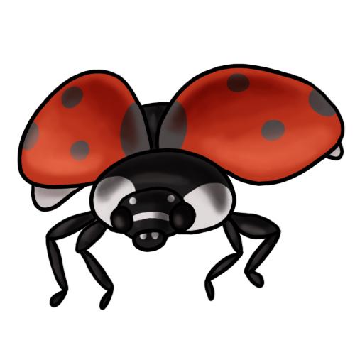 20 free ladybug clip art drawings and colorful images rh ladybug life cycle com ladybug free clipart ladybug free clipart