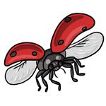Ladybug Clip Art 13