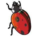 Ladybug Clip Art 17