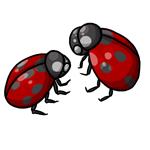 Ladybug Clip Art 18