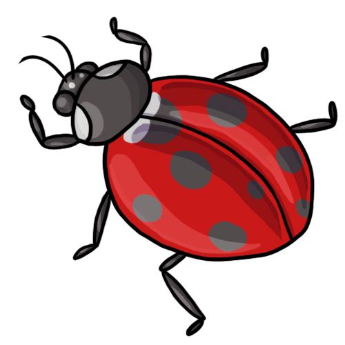 20 free ladybug clip art drawings and colorful images rh ladybug life cycle com Black and White Ladybug Clip Art Black and White Ladybug Clip Art