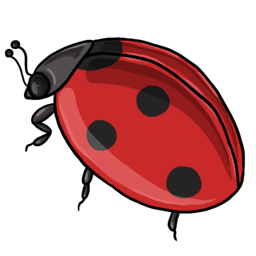 20 FREE Ladybug Clip Art Drawings and Colorful Images
