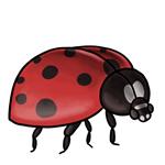 Ladybug Clip Art 8