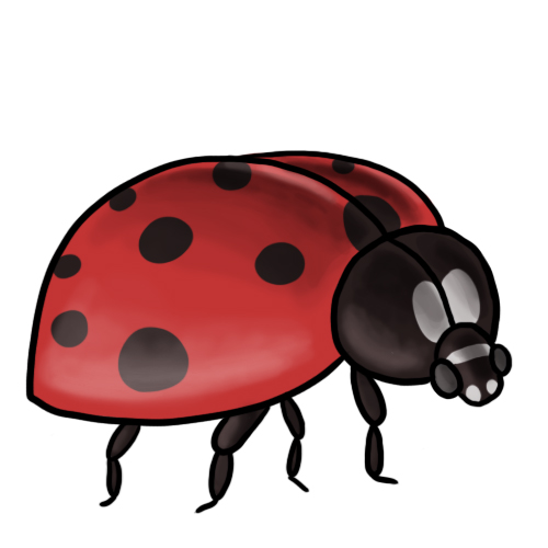 Clip Art Ladybug Clip Art 20 free ladybug clip art drawings and colorful images 7 8